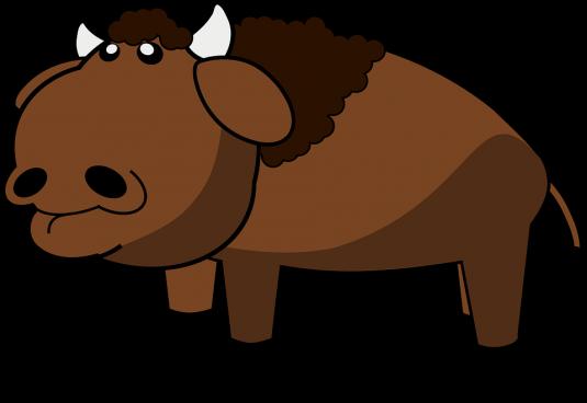 bison-160267_960_720