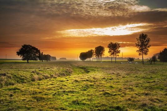 countryside-336686_960_720