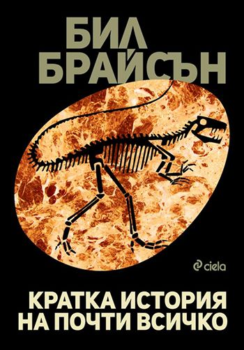 kratka_istoriq_na_pochti_vsichko_cover