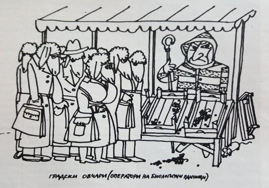 opashka-sn1
