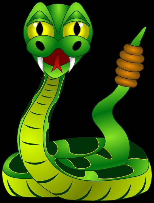 rattlesnake-159135_960_720
