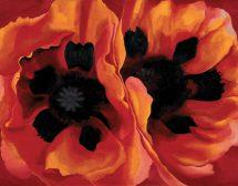 Джорджия О'Киф – между палитрата, камерата и цветята