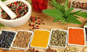 Каква диета да спазваме според конституцията на нашето тяло?