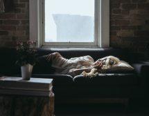 Когато се събудим уморени