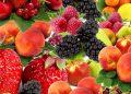 Козметика с плодове