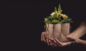 Искаме ли нещо в замяна, когато даваме?