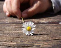Влюбването обича детайлите