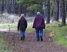 Кучетата намаляват риска от преждевременна смърт?