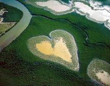 Красотата на планетата от птичи поглед