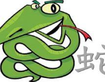 Змия в годината на Кучето