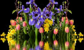 Меркурий е в Телец до 4 май – хармония и разбирателство