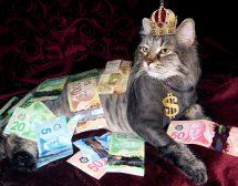 Мъжете с власт и пари възбуждат най-силно