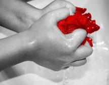 Хигиената – да не прекаляваме, без да я пренебрегваме