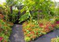 Кралското градинарско общество представя