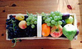 Диетичните свойства на плодовете