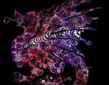 Китайски хороскоп. Дракон в годината на Свинята