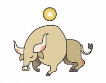 Китайски хороскоп. Бик в годината на Свинята
