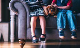 Три основни правила при домашно пране на дивани