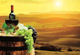 Пътеводител на любимите винени земи