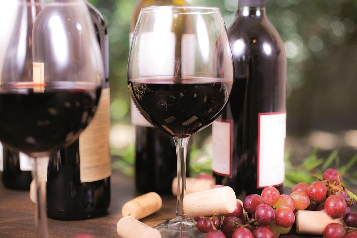 """Резултат с изображение за """"сърбия лозя и вино"""""""