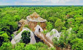 Изкуство в сърцето на джунглата