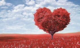 Има ли любов след любовта?