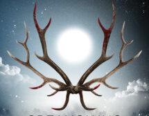 """Под лъчите на неумолимото """"Среднощно слънце"""" от Ю Несбьо"""
