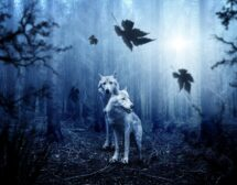 2020: Китайски хороскоп за Куче