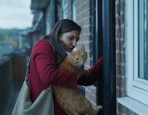 """""""Котка в стената"""" – крясък в тишината"""