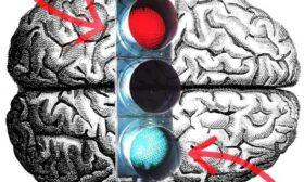 Д-р Робърт Мелило: Мозъкът и неговата реакция към вирусите