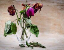 Как да се справим със загубата на любим човек