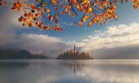 Красимир Матаров с 2 награди за мобилна фотография от престижен конкурс
