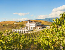 """Вила Мелник"" в Top 50 на World's Best Vineyards 2020"