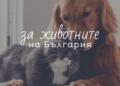 Творците на България в помощ на животните