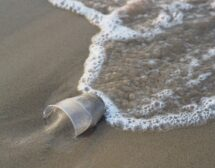 Черноморието ни е сред най-замърсените с микропластмаса