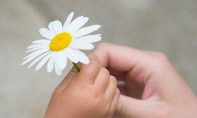 "Национална мрежа за децата стартира движение ""Заедно за децата"""