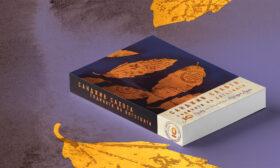 """""""Годината на бягствата"""" от носителя на Европейската награда за литература Санджив Сахота"""