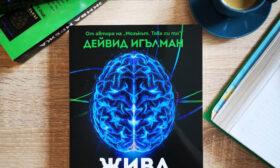 Жива мрежа – ново изследване за същността на мозъка