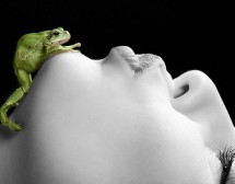 За жабите и хората