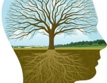 Как да развием потенциала на личността си?