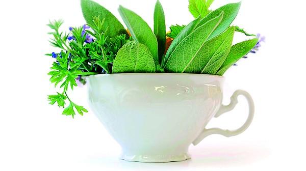 Лечебните свойства на растителните подправки