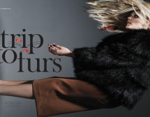 Trip to Fur